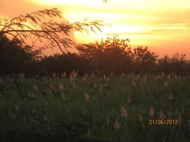 Senja di Qosrul jinaan 1